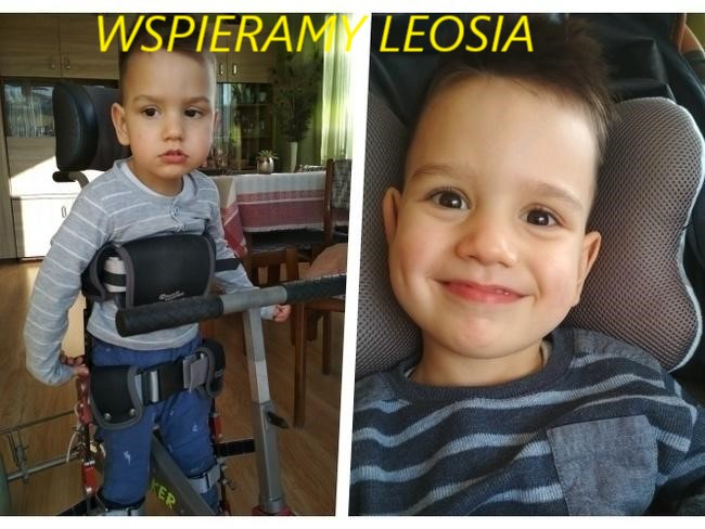 WSPIERAMY LEOSIA PICHNERA